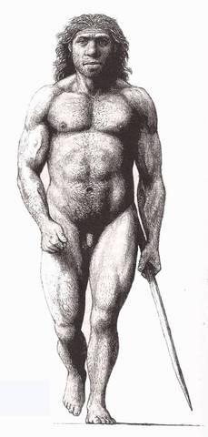 Los pre-australopitecinos