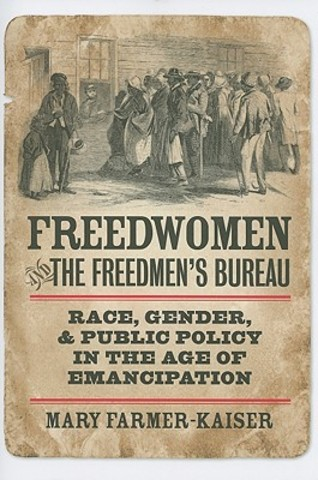 New Freedman's Bureau bill passed by Congress