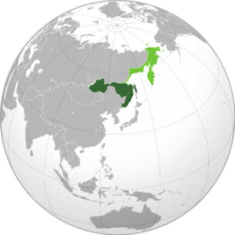 Lenin's Plan to Rid Russia of the Japanese