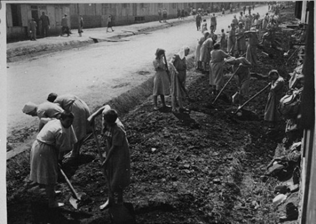 Forced labor decree issued for Polish Jews aged 14 to 60