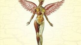 Nirvana- In Utero timeline