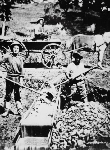 Prospectors Arrive From Overseas