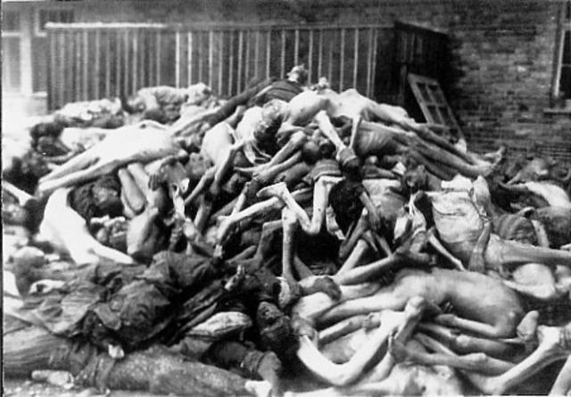 EL Gulag y Purgas