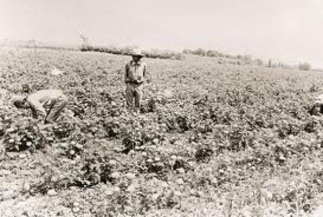 Se aprobó  ley de Reforma Agraria