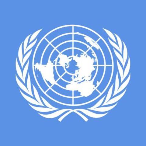 Organización de la paz