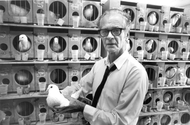 1938- B.F Skinner publishes 'The Behavior of Organisms: An Experimental Analysis' which sets out the theory and methods of operant conditioning and his 'radical' behaviourism.