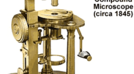 The History of the Microscope and Cells timeline