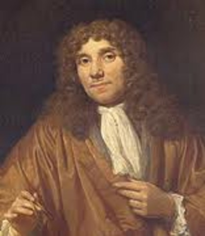 Anton van Leeuwenhoek uses to identify blood cells, insects &more