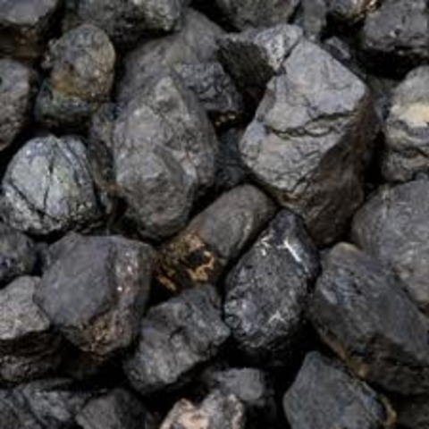 Coal Power rises above wood as the most popular form of energy