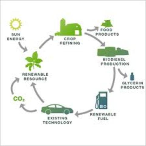 Biodiesal plants