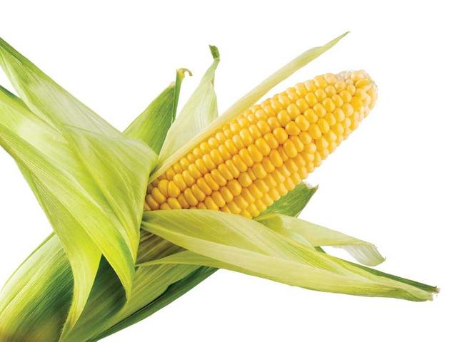Congress Lifts Tax on Ethanol