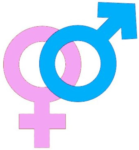 1970 Gender Bias