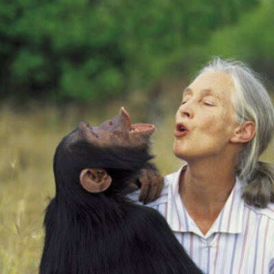 Jane Goodall's TIMELINE timeline