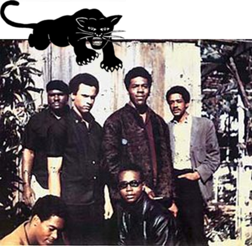 Black Panther Party Founded (VUS.14b)