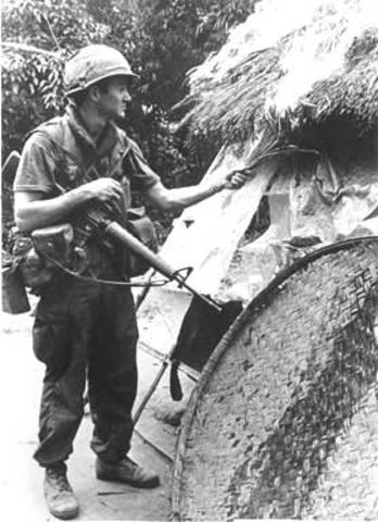 the My Lai Massacre  (VUS.13b)