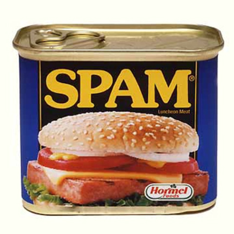 Spam is born!