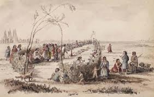 Canada Buys Rupert's Land (Prairies)