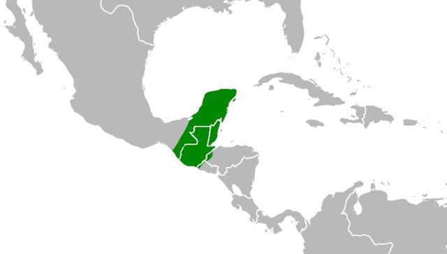 GUATEMALA SE SEPARA