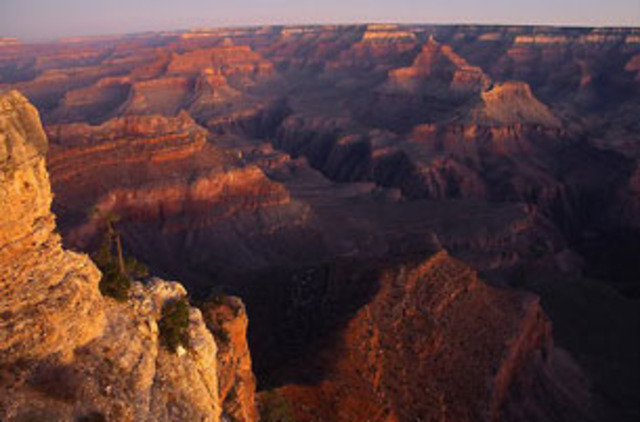 Francisco Vasquez de Coronado, while searching for that gold, discovered the Grand Canyon