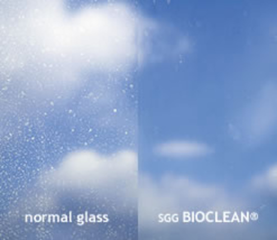 Self-Cleaning Glass