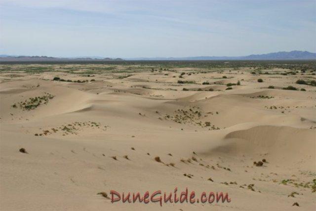 desert  protection