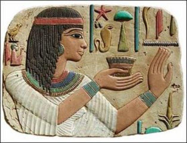 social   organization  of   egypt