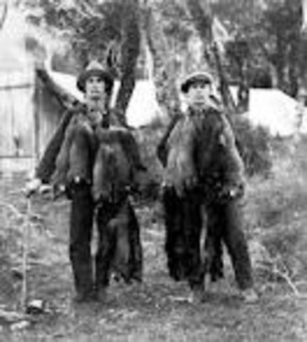 French Trappers and trade