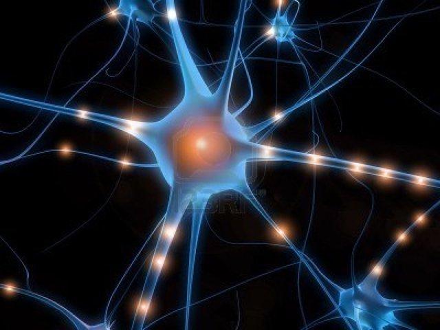 Célula nerviosa