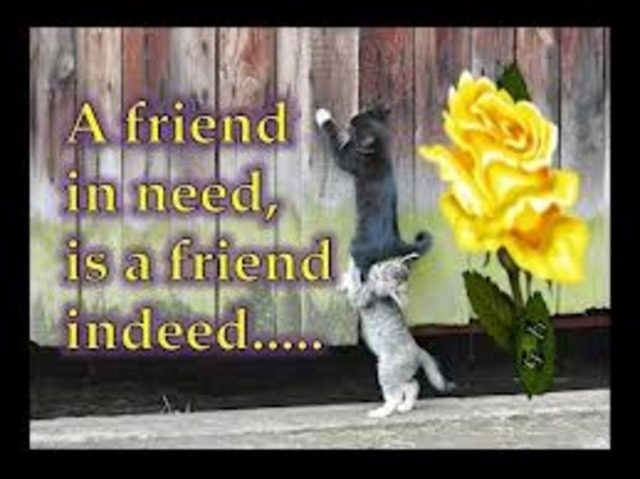 Friends on the outside