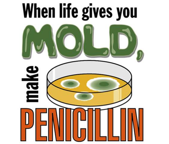 Sir Alexander Fleming isolated penicillin