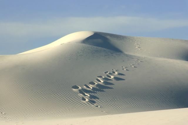 White Sands National Monument Established