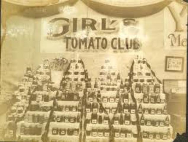 Girl's Tomato club AHEA