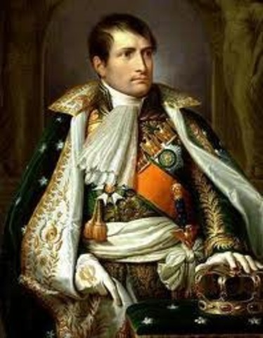 Napoleon Takes Control Over France