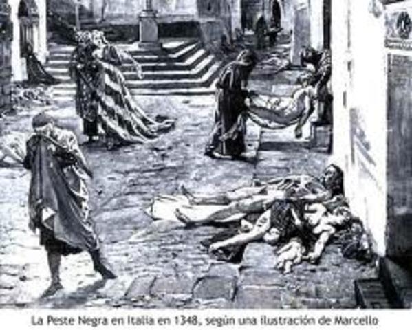 Pesta Negra