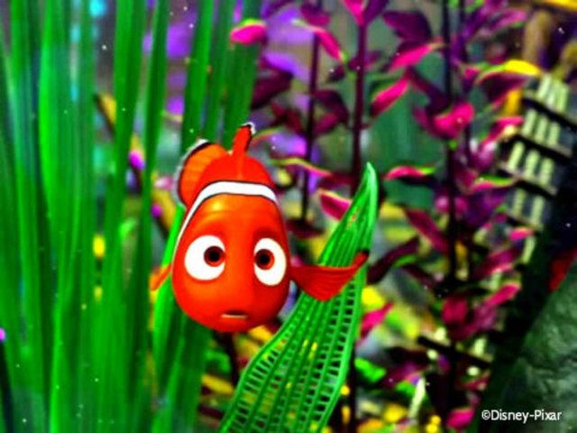 Nemo clogs the filter to escape, but fails.