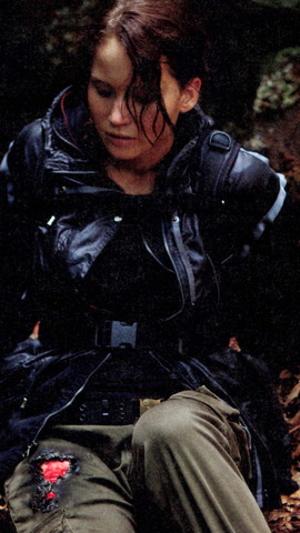Katniss realizes she got hurt from the fire and gets medicine from the sponcers