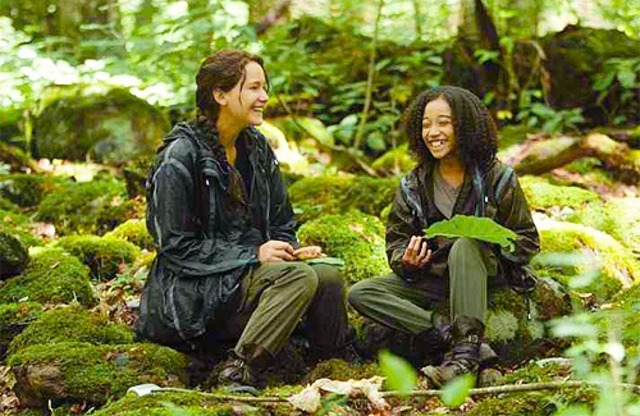 Katniss makes an alliance with Rue