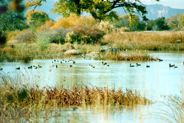 Emergency Wetlands Resources Act