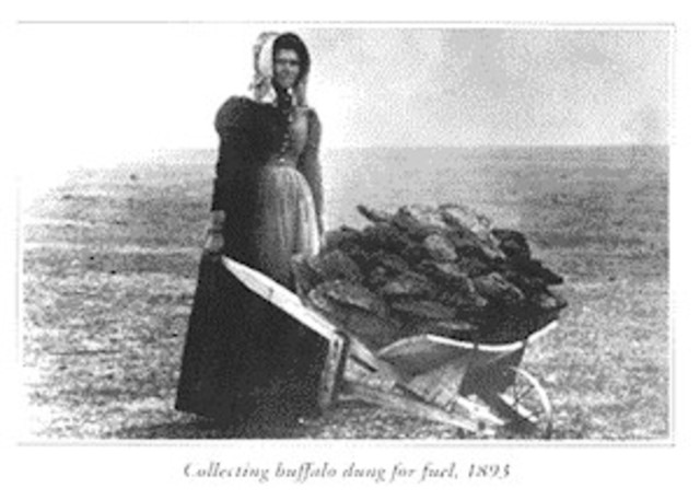 Homestead Act Encourages Independent Women to Move West