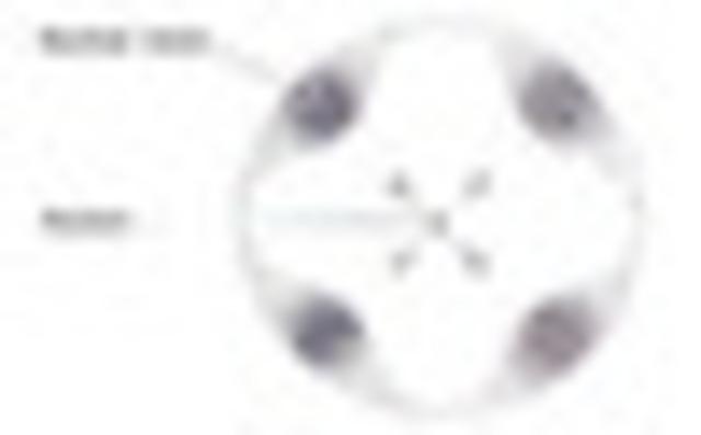 Electron Cloud Atom(Heisenberg)
