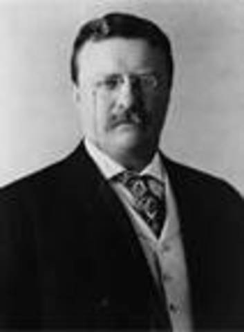 Theodore Roosevelt takes office as POTUS