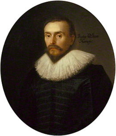 William Harvey, discribed the circulation of blood to and from the heart