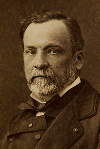 Louis Pasteur, began pasteurizizng milk to kill bacteria