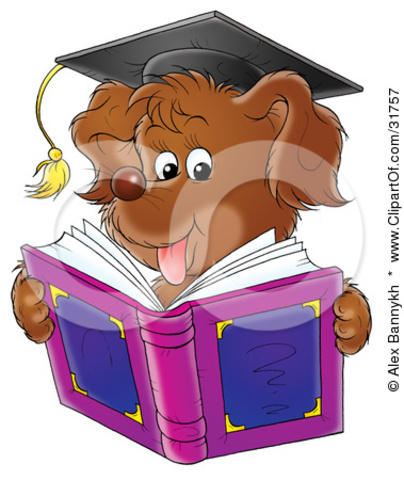 8th Grade Graduate