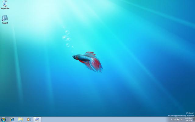 Windows 7 y Windows Seven