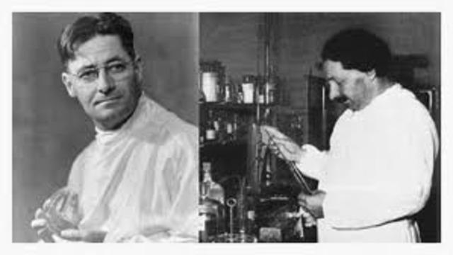 Purification of Penicilin