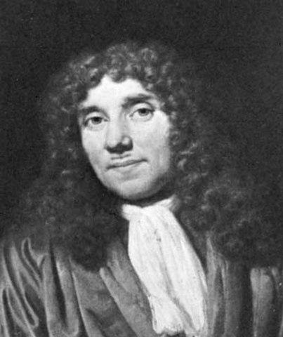 """Leeuwenhoek Coins the Term """"Cells"""""""