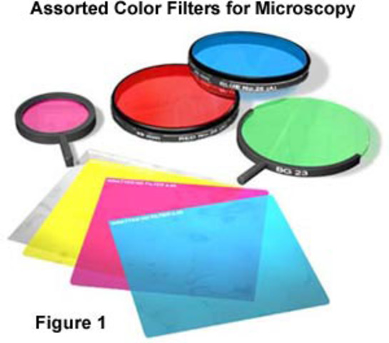 Microscope advancement