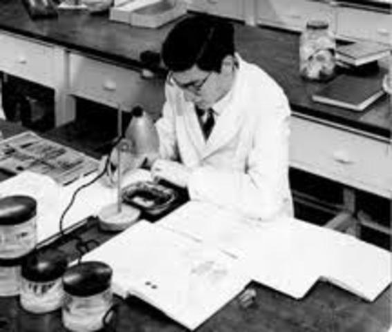 First Meningitis Vaccine