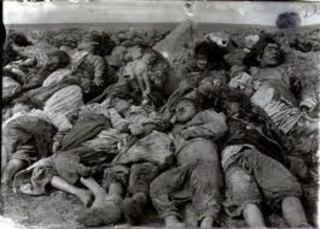 The genocide of Armenians takes place